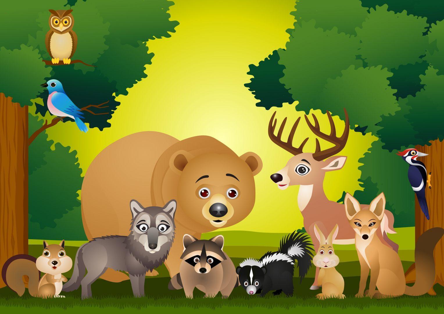 Animales del bosque im genes y fotos - Fotos infantiles de animales ...