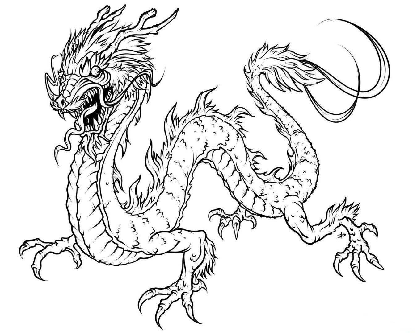 Hermosa Dragón Real Para Colorear Imagen - Dibujos Para Colorear En ...