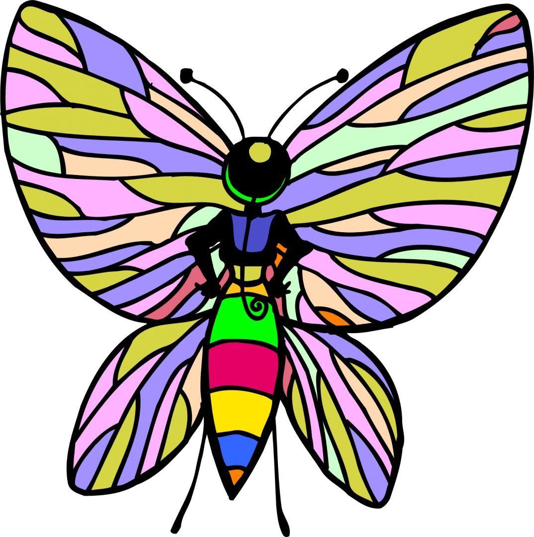 Mariposa Colorida Im 225 Genes Y Fotos