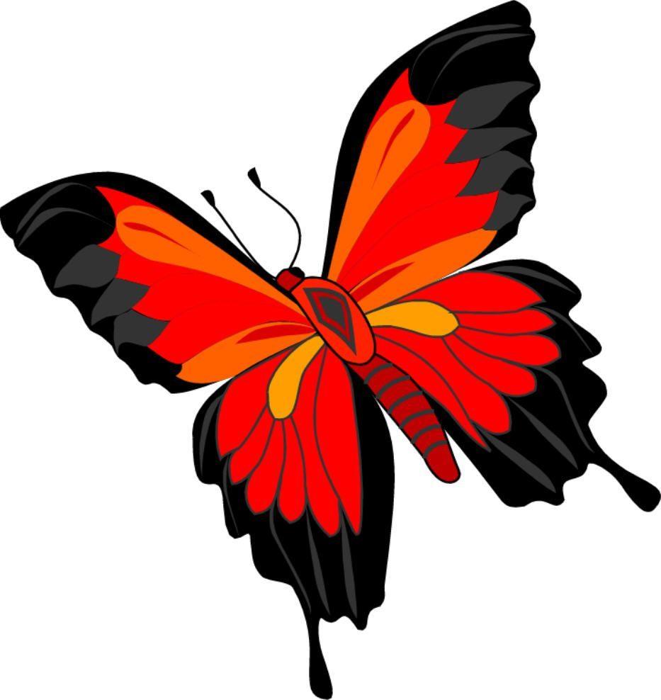 Mariposa roja  Imgenes y fotos